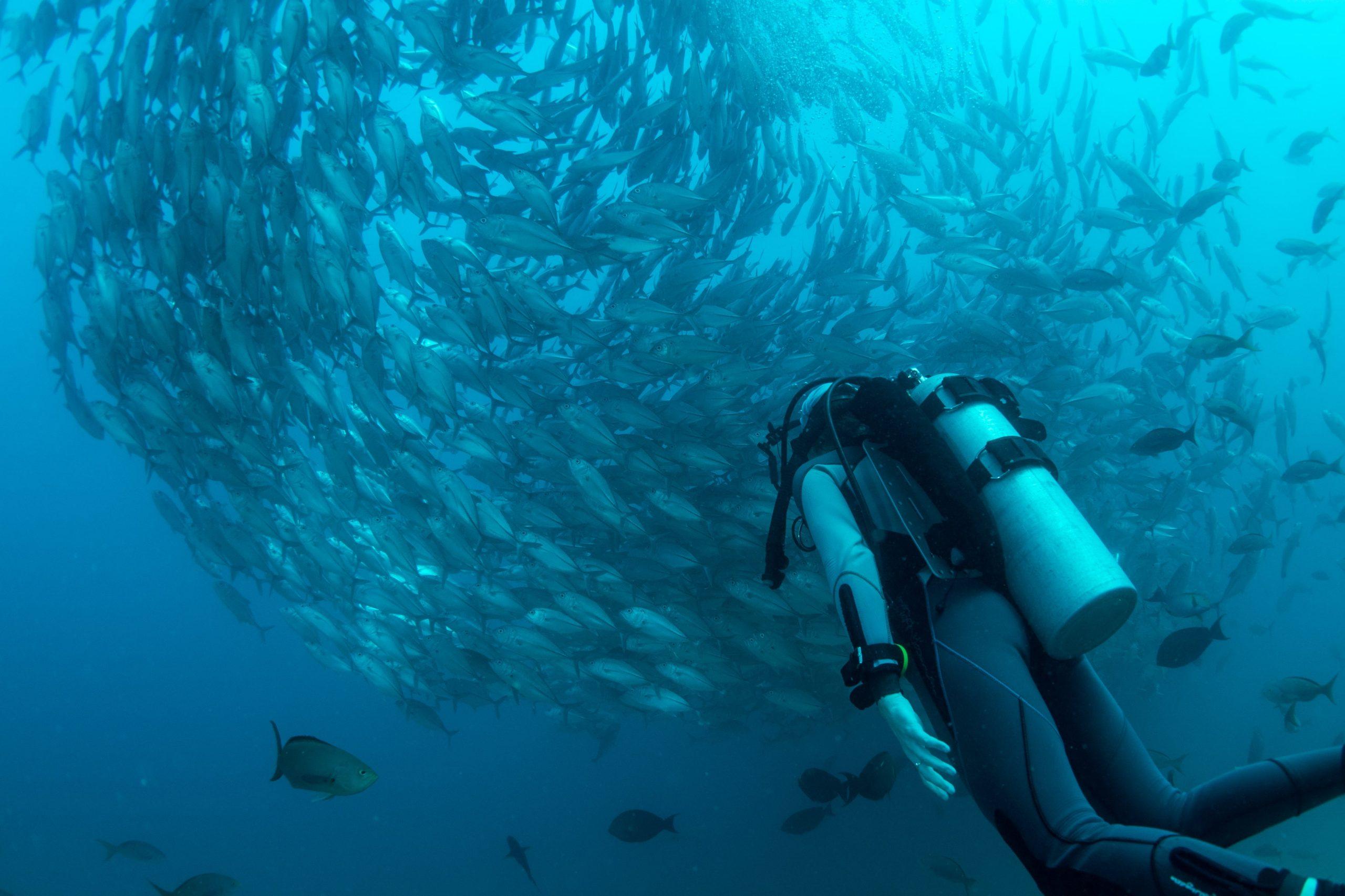 Plongeur sous-marin Duris Plongée
